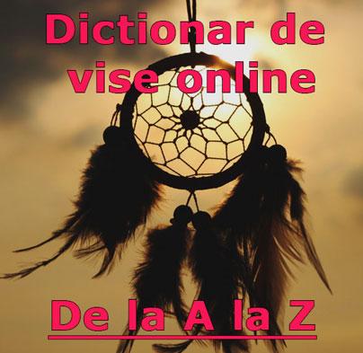 dictionar de vise online